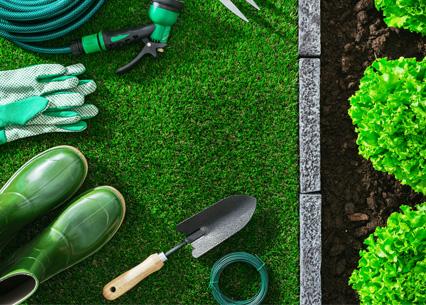 Promotion Jardinage 2019